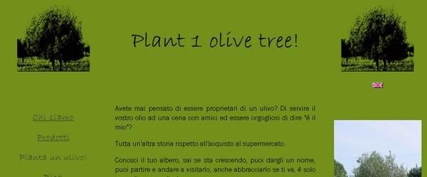 Adotta un albero di ulivo con Plant1OliveTree