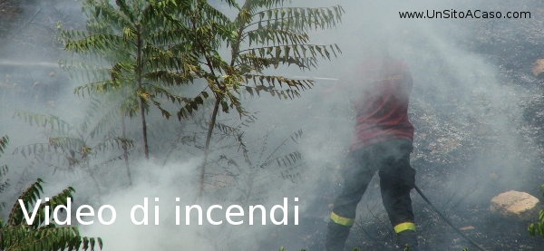 Drammatici video di incendi