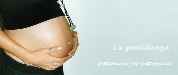 Informazioni sulla gravidanza settimana dopo settimana
