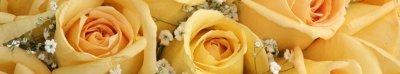 2012-abiti-sposa-rose