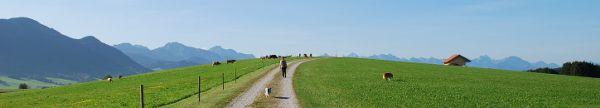 Scegliere l'agriturismo in Alto Adige